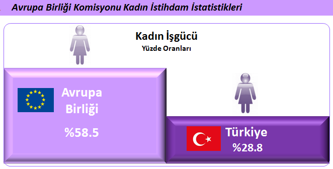 istatistik1